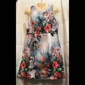 Adrianna Papell Floral Sleeveless Scuba Dress